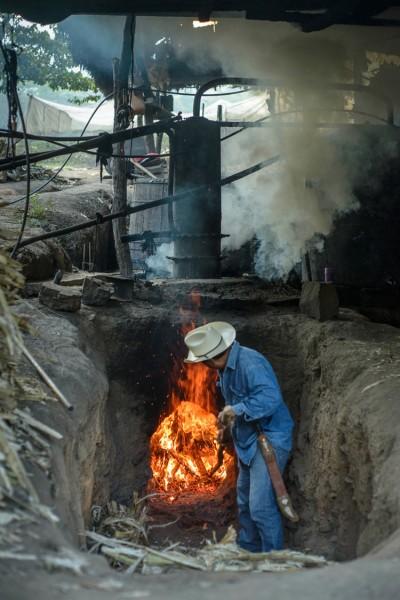 Distillation-Rum-Paranubes-OaxacafBAyqIoGSF12I